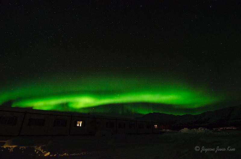 USA-Alaska-Coldfoot-Aurora-3353.jpg
