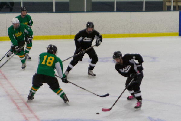 Wolves at Golden Seals 5-8-2014