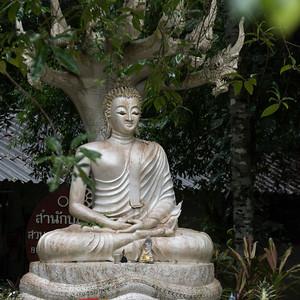 Culture on the Island of Koh Samui, Thailand