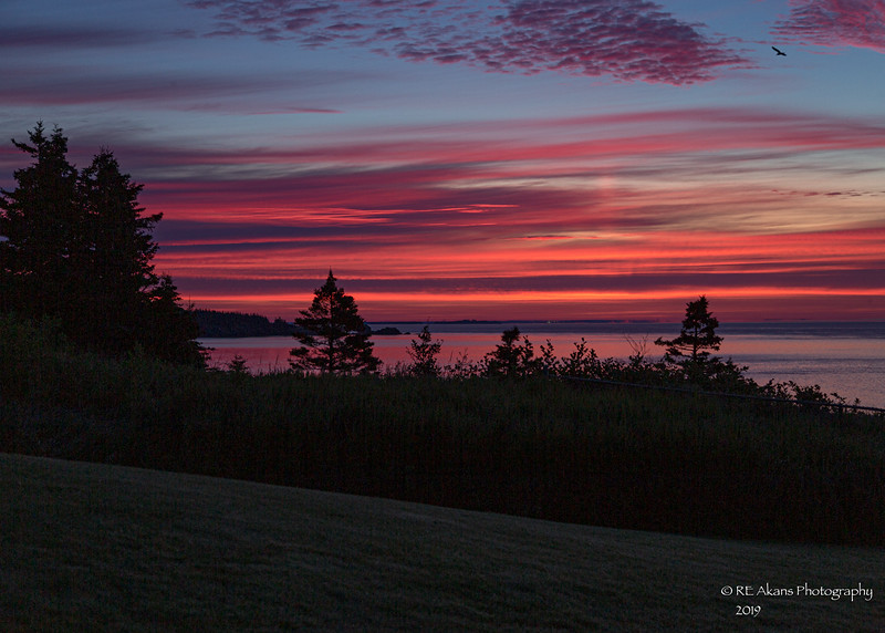 West Quoddy Dawn 0179.jpg