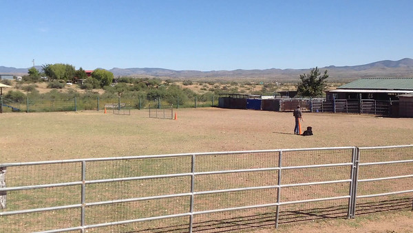 AKC Trial Oct 4-5 2014