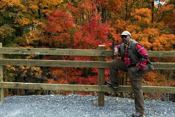 Fall foliage Scenes