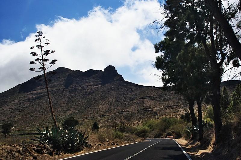 Cesta do Santiaga del Teide, zhruba 1000 metrů nad mořem