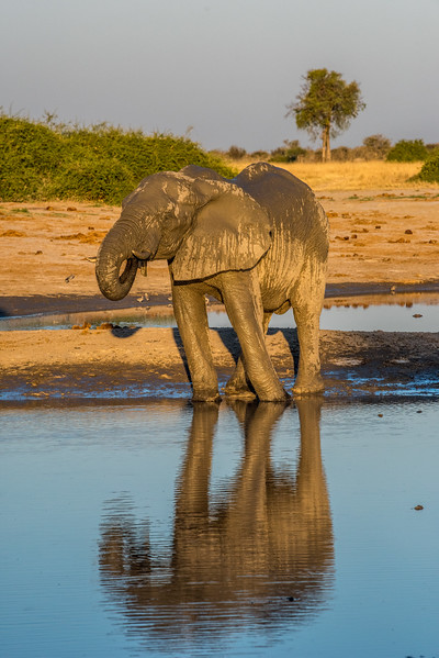 Botswana_June_2017 (4095 of 6179).jpg