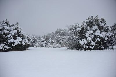 2021-01-10 - Granbury Snow