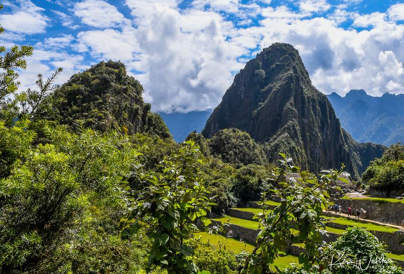 2018 Machu Picchu-27.jpg