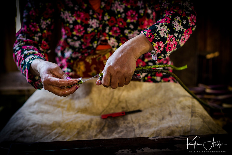 This worker pulls the lotus plant fiber from the stalk for use in weaving.