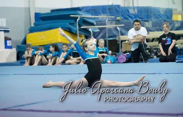 140301 Gymnastics Plus Meet level 4-5