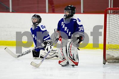 2/12/16 1:05 Darien Youth Hockey Squirt B vs Boston Jr Terriers White - Squirt AA