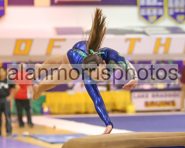 2012-2013 Girls Gymnastics