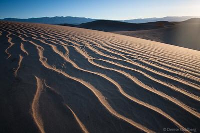 Desert beckoning - December 2009