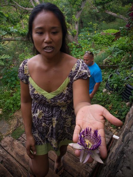 escargot monica flower.jpg