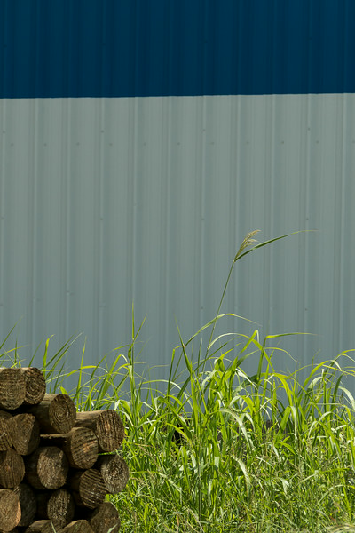 corrugated barn in blue and white, grass in green