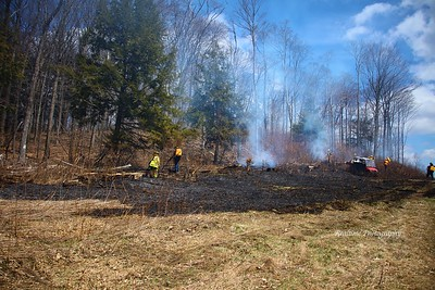 Brush Fire - Ten Mile Rd, Limestone, NY - 4/25/20