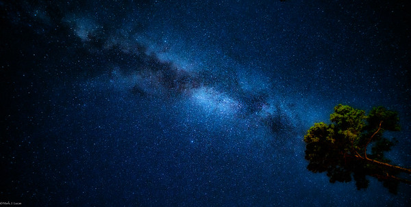 Milky Way front yard