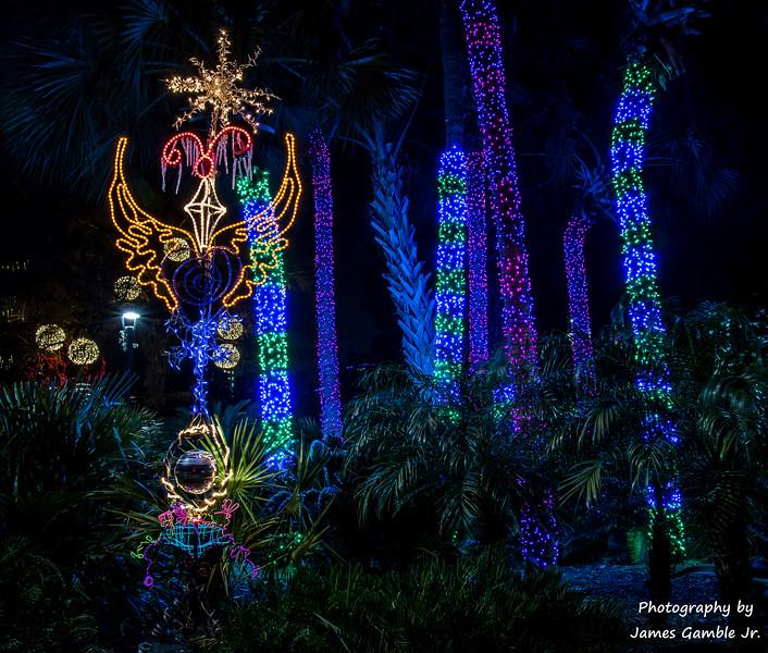 Houston-Zoo-Lights-3007.jpg