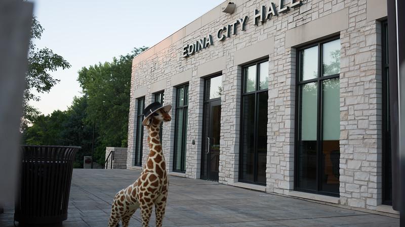 Giraffe-3125.jpg