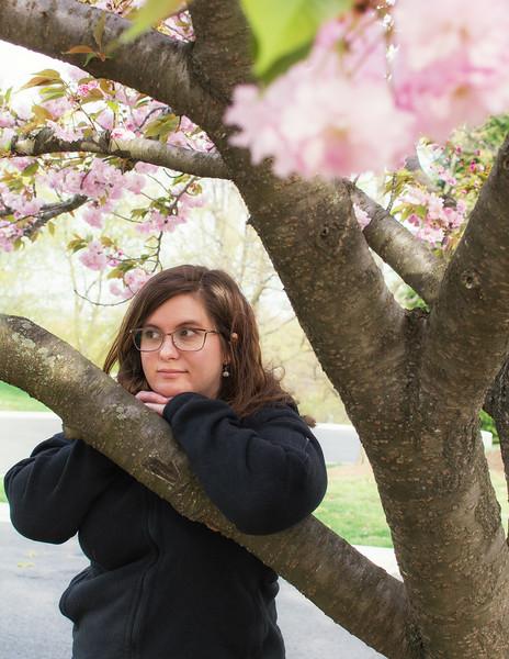 lauren cherry blossom.jpg
