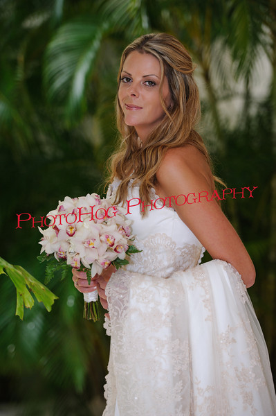 Weddings, Portraits & Maternity
