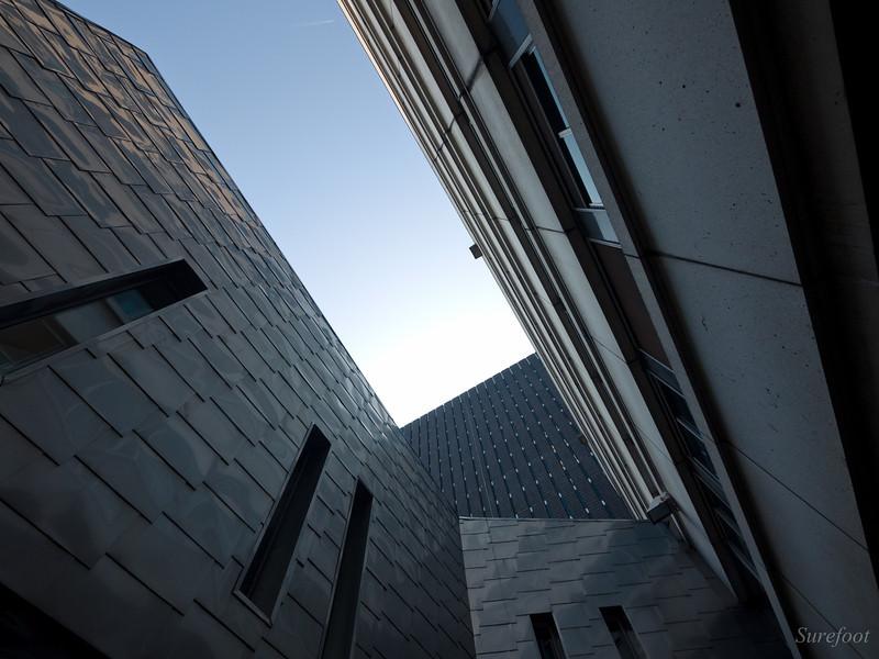 Sortie Archi Lyon - 24 mars - Les photos I-KQ8735C-L