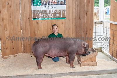 July 15 Hog Market and Carcass Judging