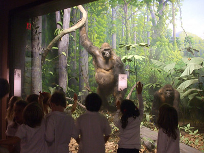 Academy of Natural Sciences Trip