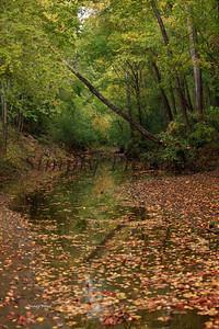 Lanana Creek022