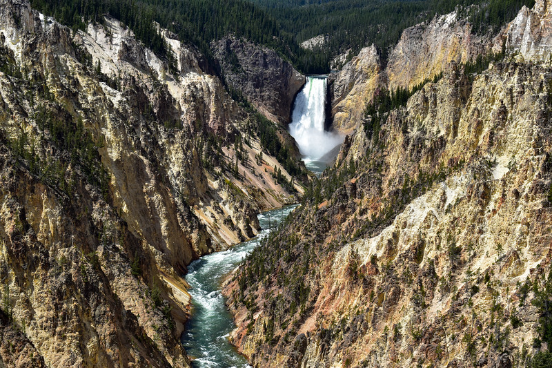 Yellowstone National Park - Grand Canyon of the Yellowstone (7-21-20)