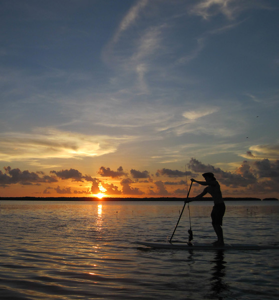 islamorada sunset paddle