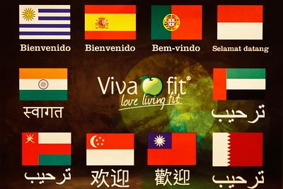 Convenção Vivafit 2015
