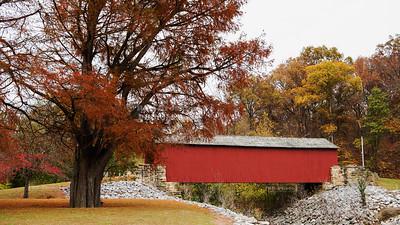 USA, IL - Mary's River Covered Bridge
