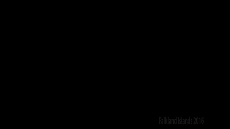 Falklands Movie Video