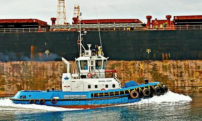 Tug, Pilot & Work Boats