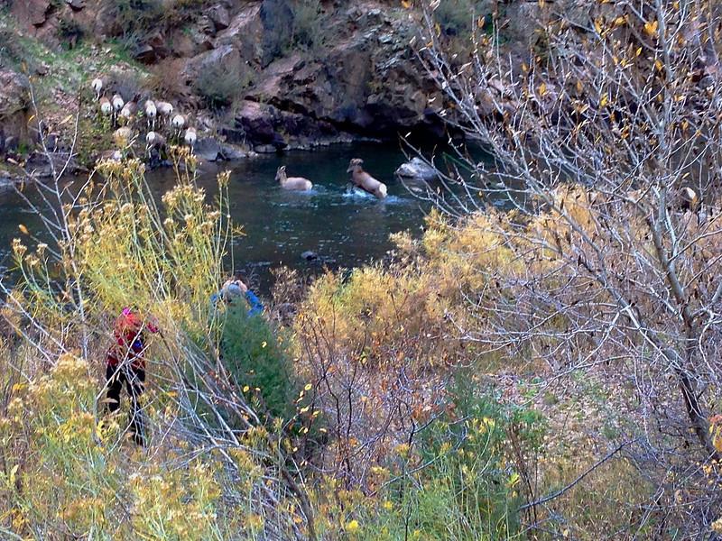 Waterton Canyon 038.jpg