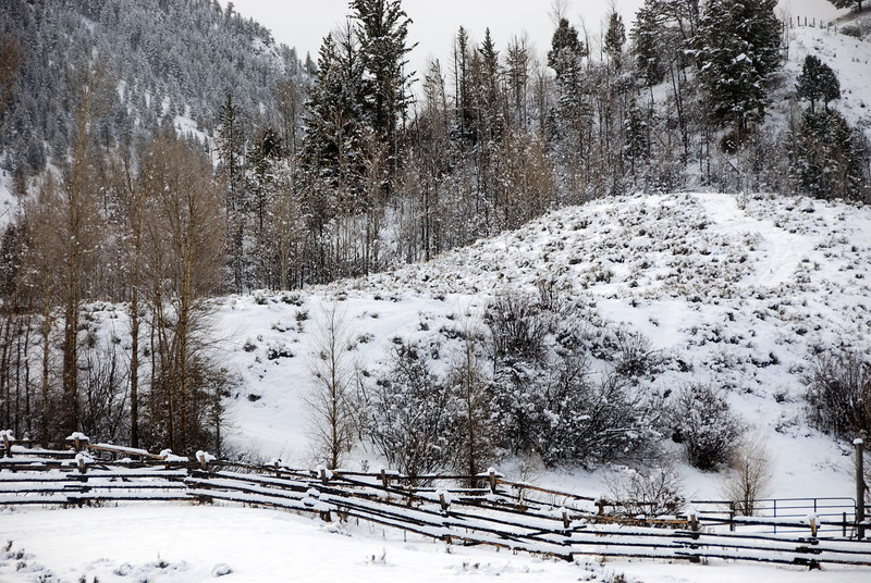 Fence and hillside   (Dec 14, 2006, 09:22am)  Taken from a moving bus on the way to Jackson Hole airport..
