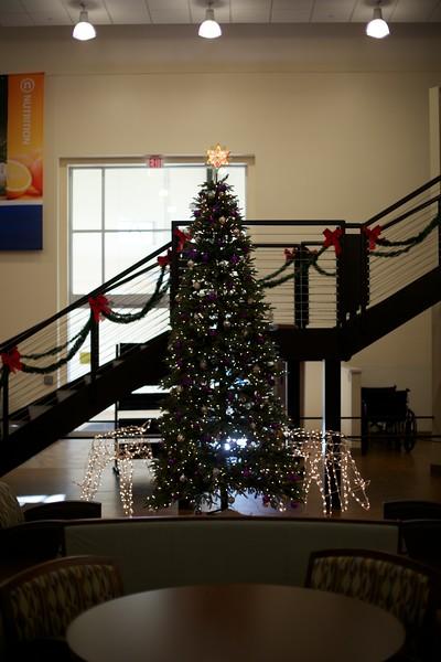 Avista Christmas