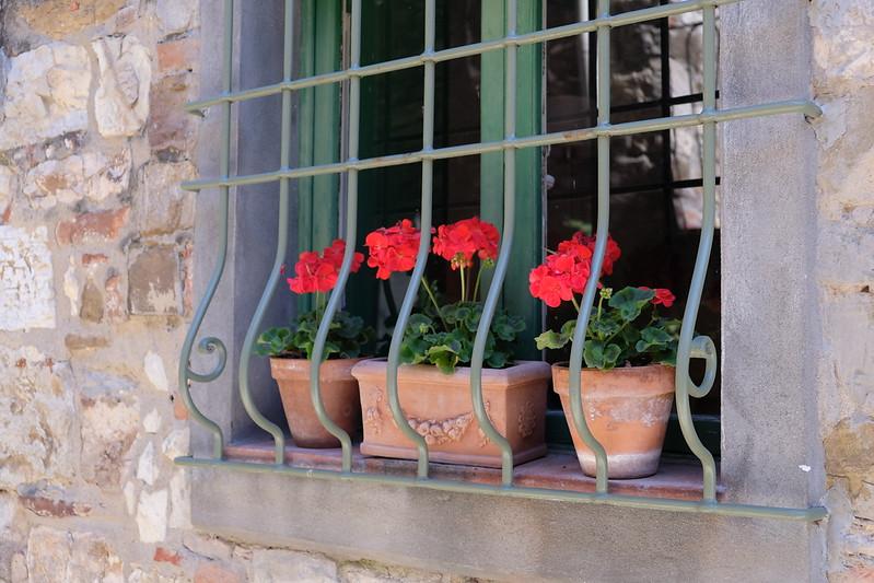 Flowers in Window - Radda.JPG