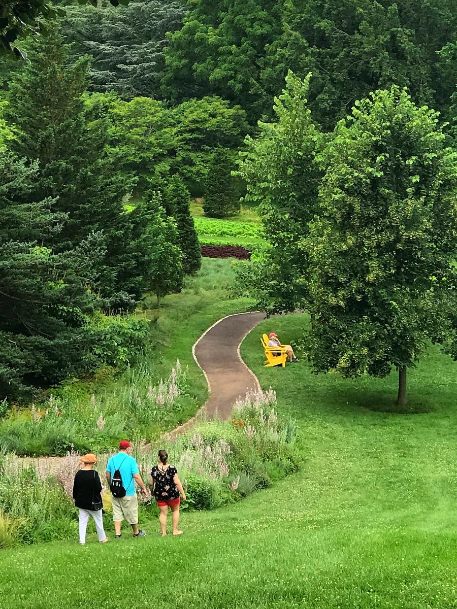 公园漫步,蜿蜒的视线