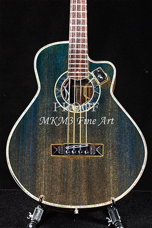 Harris Acoustic Bass Drawing Wall Art Photographs