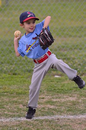 Cardinals 5-6-2013