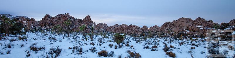 Real Hidden Valley Under Snow