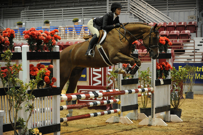 Horse show (85).jpg