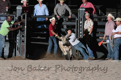 Day 4 - Chute Dogging and Steer Wrestling