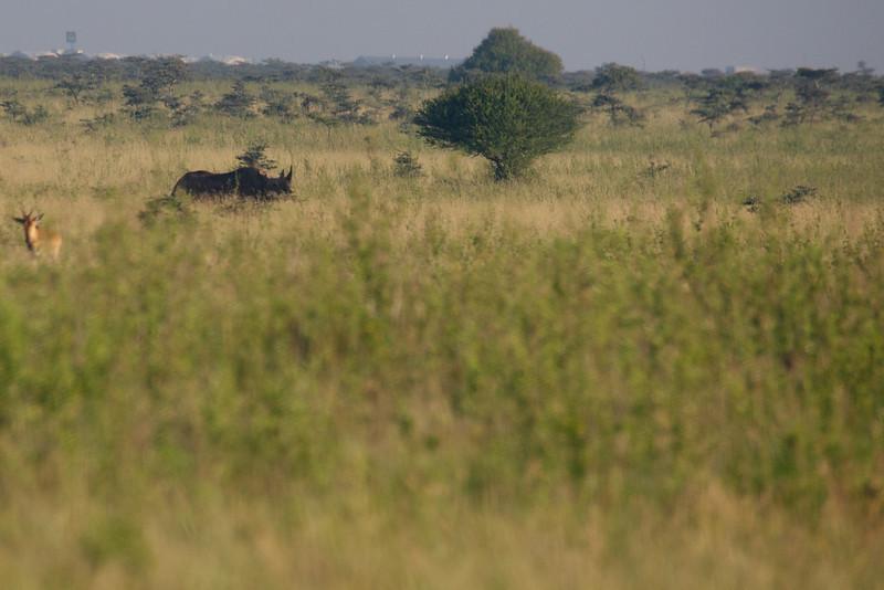 Kenya.Card1.02.2014 556
