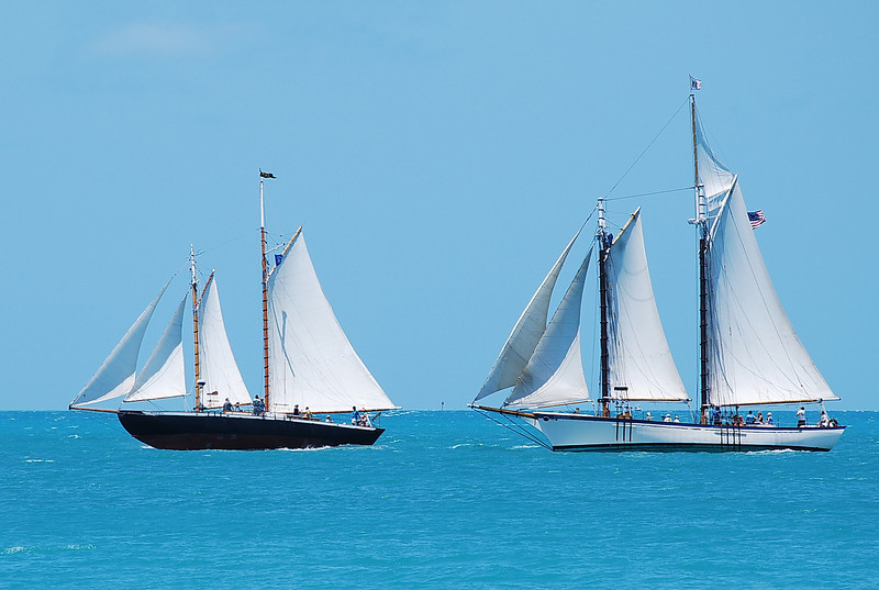 Schooners with full sails in Key West harbor.