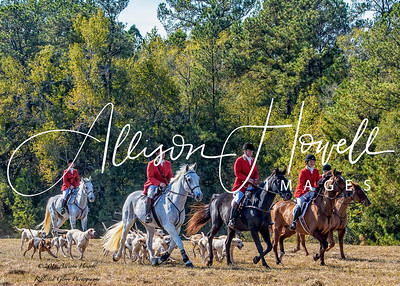 Belle Meade Hounds Opening Hunt 2016