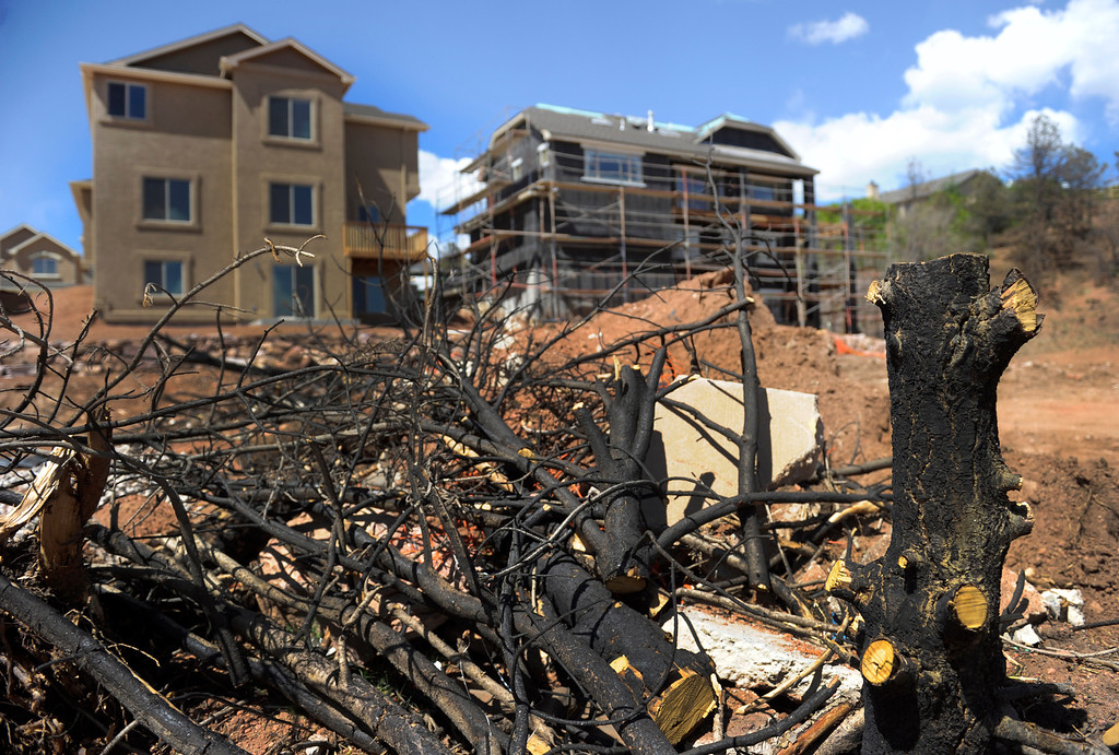 . The charred remains of some trees are still present in the foreground of new homes that are under construction in the Parkside subdivision. (Photo By Kathryn Scott Osler/The Denver Post)