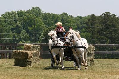 The North Carolina Percheron Horse Association Annual Field Day 2008
