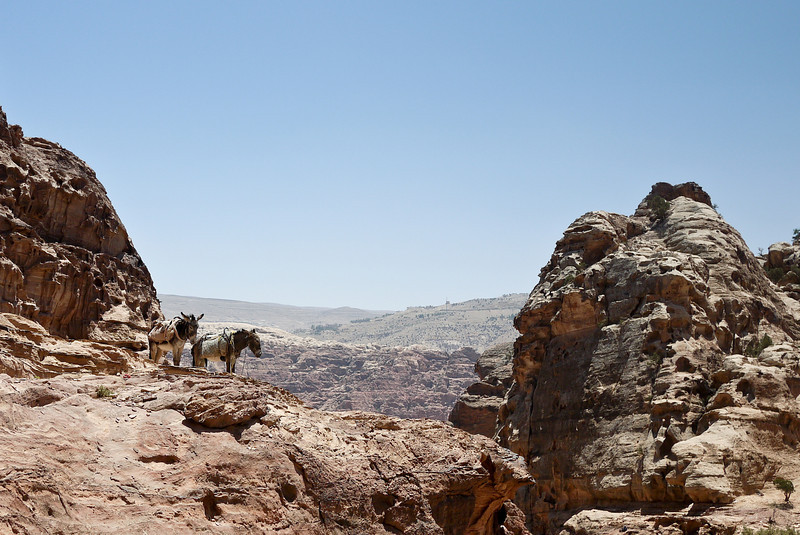 Views from the hike up to the Monastery in Petra, Jordan.