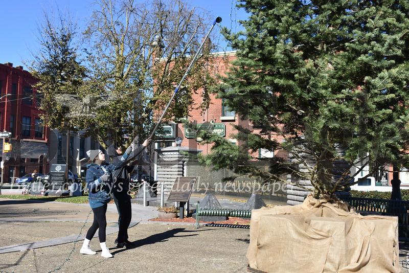 1118_LOC_Christmas Tree 1 Diamond Park